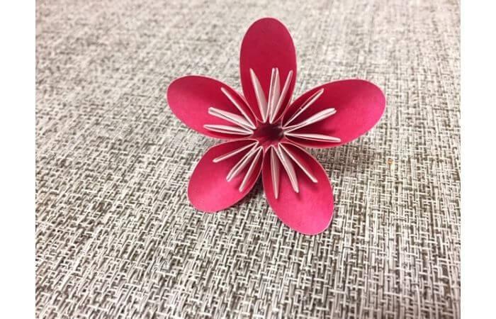 簡単折り紙「梅の花」